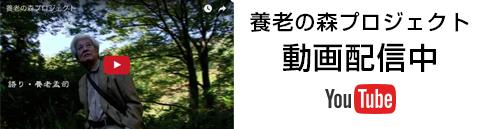 養老の森プロジェクト動画